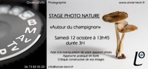 stage_nature_champignons_450